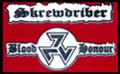 SKREWDRIVER BLOOD AND HONOR PIN - 102