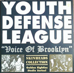 Youth Defense League, The Voice of Brooklyn